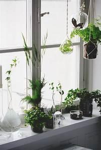 Pflanzen Für Innen : fensterbank dekoration 57 ideen wie sie das potenzial ~ Michelbontemps.com Haus und Dekorationen