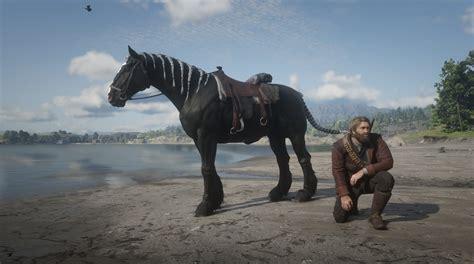 horses hair braided redd weirdo had am reddit