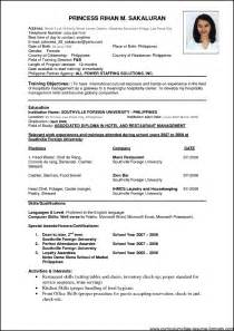 resume layout for sle resume format for experienced it professionals doc free sles exles format