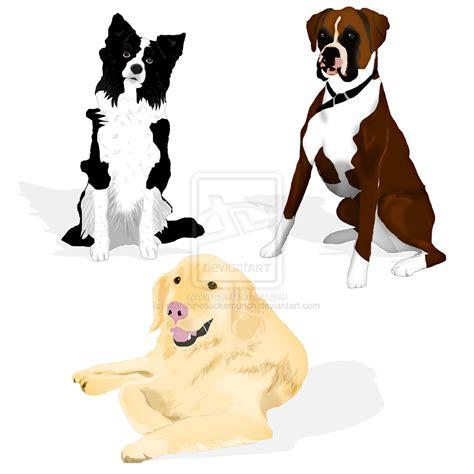Border Collie Dog Clip Art