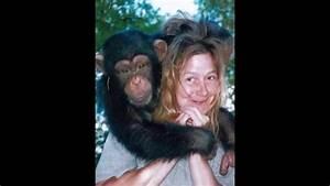 Ojos Rojos: Brutales ataques de chimpancés a humanos