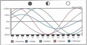Biorhythmus Tagesverlauf Berechnen : biorhythmus theodora mis ~ Themetempest.com Abrechnung