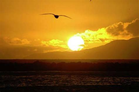 capture  perfect sunset photography blog
