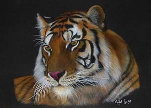 Peindre Au Pastel : aux aguets pastels animaux sauvages ~ Melissatoandfro.com Idées de Décoration