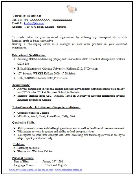 resume format  experienced sample template