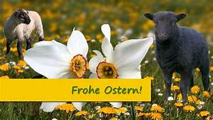 Frohe Ostern Lustig : frohe ostern ostergr e f r kinder familie mit fl tenmusik osterglocken osterlamm youtube ~ Frokenaadalensverden.com Haus und Dekorationen