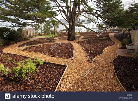 using bark chippings in garden wood chippings laid as garden paths wooden edging and bark stock photo royalty free image