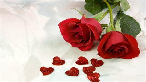 top desktop roses wallpapers hd rose wallpaper