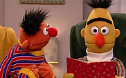 The Truth About Bert And Ernie's Relationship Leads To ...