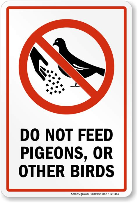 dont feed pigeons or other birds sign sku s2 1444