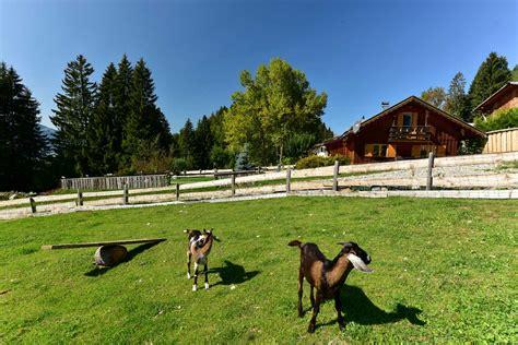 Häuser Mieten Im Allgäu by Bergh 252 Tte Mieten Im Allg 228 U Selbstsversorgerh 252 Tte Am