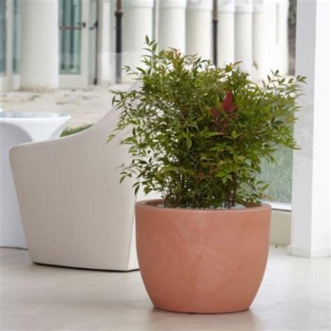vasi da arredamento interno nicoli conca hera 60 vasi resina vaso arredamento piante