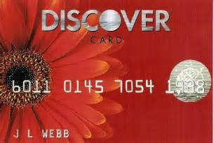 Gerbera Daisy Discover Card