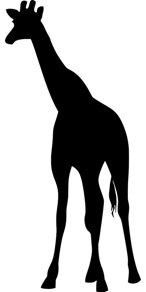 svg mammal animal safari wilderness  svg image