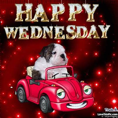 Wednesday Happy Morning Quotes Hump Memes Funny