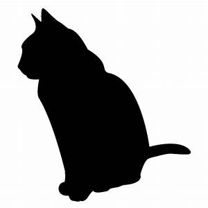 Katze Erbricht Oft : der einfachste weg zum perfekten futter futterwahl ~ Frokenaadalensverden.com Haus und Dekorationen