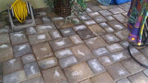 paver cleaning and sealing archives paver sealing and