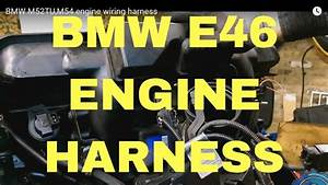 Bmw N42 Wiring Diagram