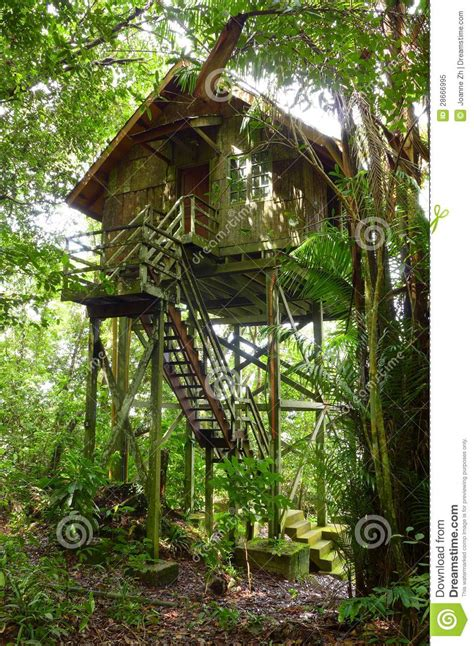 treehouse wooden eco tourism resort royalty  stock