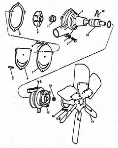 Water Pump Parts For Ford 8n Tractors  1947