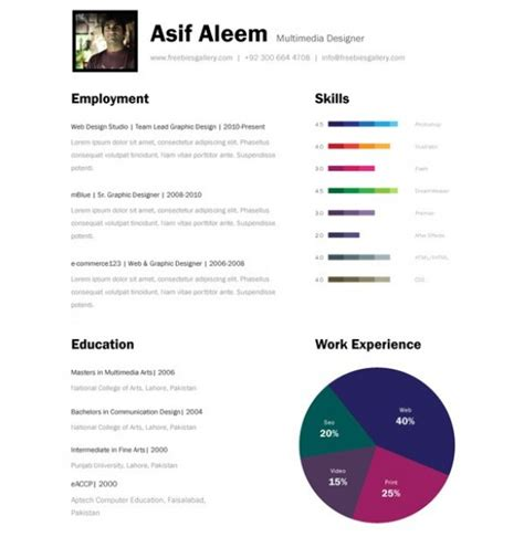 amazing bar graph  page resume template welovesolo