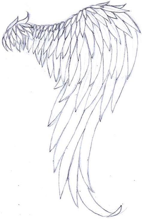 Images Of Angel Wings Drawing Tumblr Golfclub