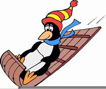 Sledding Clipart Sled Cartoon Penguin Penguins Dog