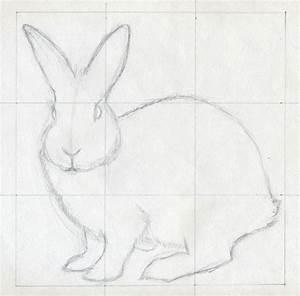 Rabbit Simple Sketch