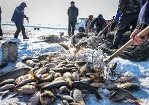 Ice fishing event held in NE China's Chagan Lake - Global ...