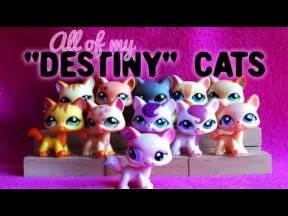 lps destiny cats lps how to draw a shorthair cat