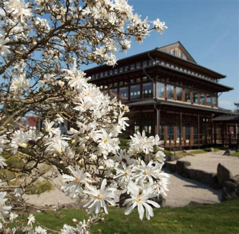 Japanischer Garten Mecklenburg Vorpommern by Themeng 228 Rten In Bad Langensalza 246 Ffnen Anfang April Welt