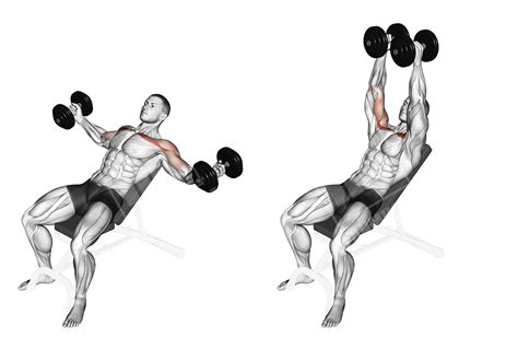Massive Chest Workout