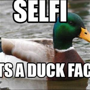 Actual advice mallard | Hilarious pictures with captions