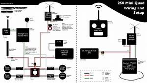250 Quad Wiring Diagram   Fpvracing