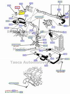 Wiring Diagram Database  2001 Ford Taurus Coolant Hose Diagram