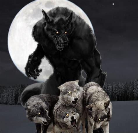 pictures  werewolves youre   love