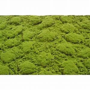 Plaque De Mousse : plaque de mousse artificielle 100x200cm mat riel mur ~ Farleysfitness.com Idées de Décoration