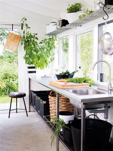 plante pour cuisine les plantes animent la cuisine ma plante mon bonheur