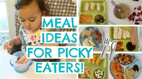 toddler meals for picky eaters toddler meal ideas 556 | maxresdefault