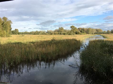 Sculthorpe Moor Nature Reserve: North Norfolk Visitor's Guide