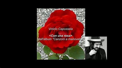 Testo Con Una Rosa idee in libert 224 con una rosa vinicio capossela con testo