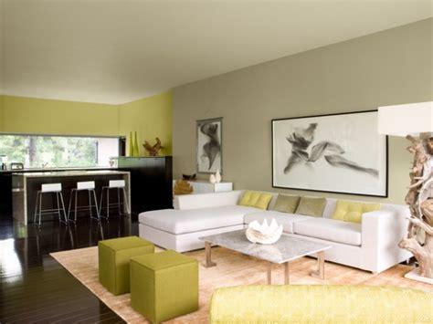 top livingroom decorations living room color ideas