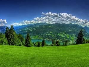 HD Widescreen Backgrounds Wallpapers: Beautiful Green ...