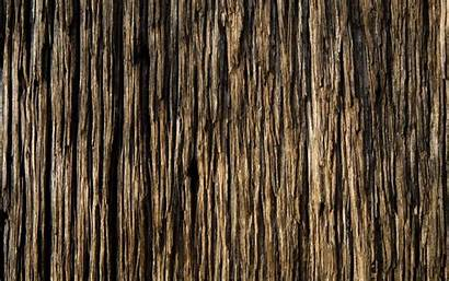 Texture Wallpapers Background Wall Textures Wood Wooden