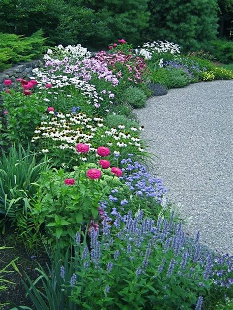 great border plants great perennial border landscaping and outdoor spaces pinterest perennials spring garden
