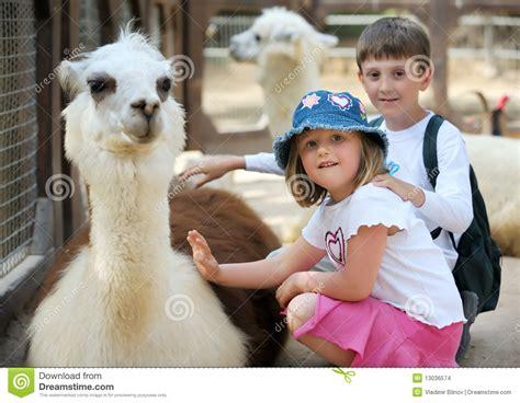 children  animals   zoo stock photo image