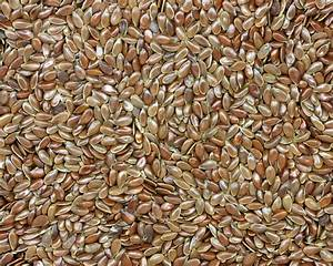 Health Benefits Flax Seeds - Flax Seed Bread/Nutrition ...