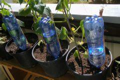 Bewässern Im Urlaub balkonpflanzen im urlaub bew 228 ssern 187 die besten ideen