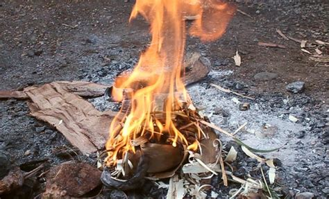 How To Make A Fire By Rubbing Two Sticks Together