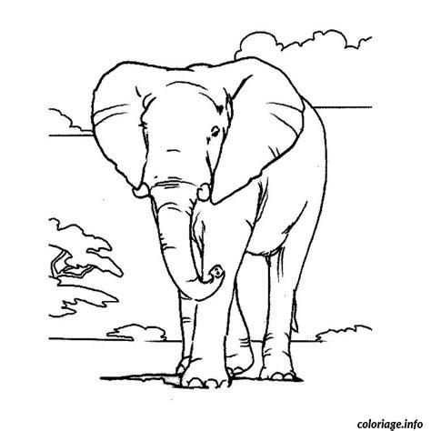 coloriage elephant d afrique jecolorie